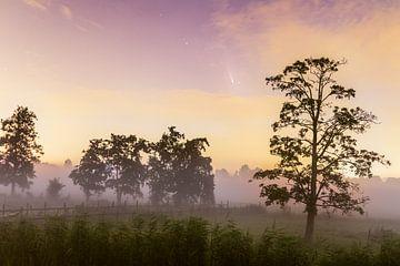 Komeet Neowise boven Nederlands landschap met ochtendmist van Sander Groffen
