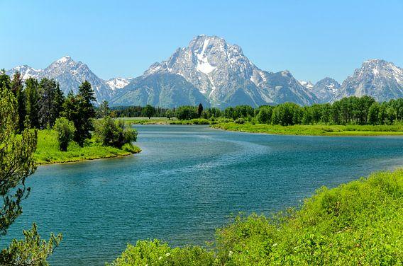 Uitzicht op bergen in Grand Teton in de VS met een stuk Snake rivieeeer vlakbij  Jackson Lake van Hein Fleuren