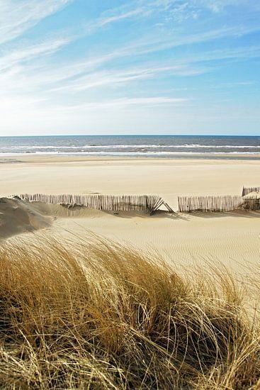 sunny afternoon van Dirk van Egmond