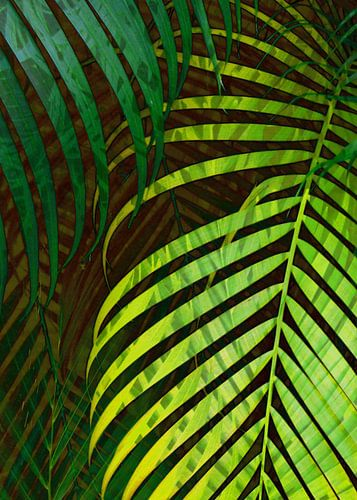 TROPICAL GREENERY LEAVES no8 von