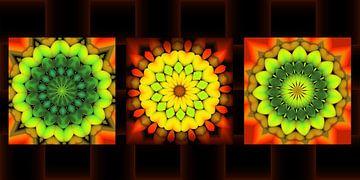 Caleidoscoop serie van Carla van Zomeren