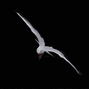 De Blik in de Ogen van De Meeuw in Vogelvlucht- Schilderij