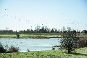 Paysage néerlandais typique sur Jan Willem De Vos