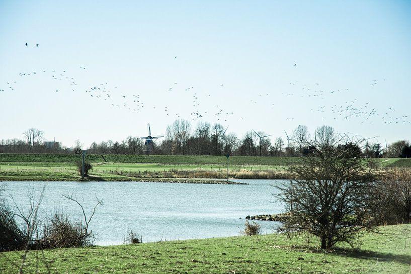 Typisch Nederlands landschap van Jan Willem De Vos