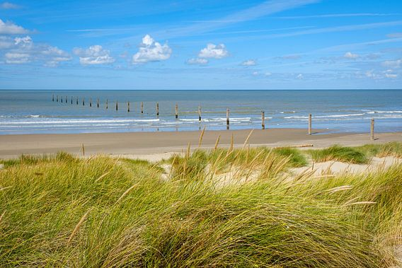 Strand van Nieuwpoort