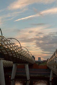 Eisenbahnbrücke nach 's-Hertogenbosch am Abend von Rob van Eerd