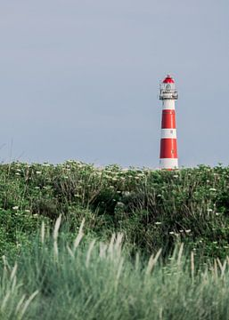 Leuchtturm in Ameland von Maria Nepomnyashchikh