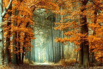 Szenischer Herbst von Lars van de Goor