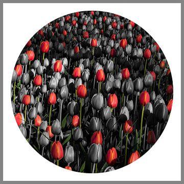 Compositie met tulpen van Raoul Suermondt