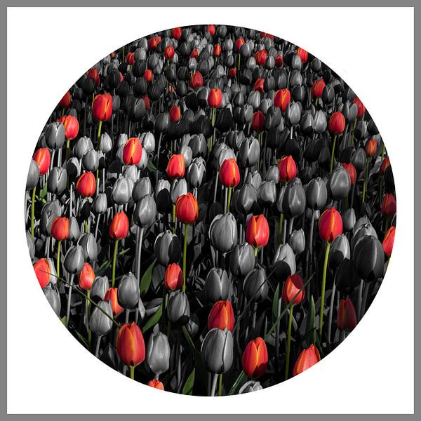 Compositie met tulpen