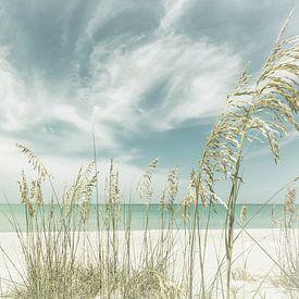 Himmlische Stille am Strand | Vintage Panorama von Melanie Viola