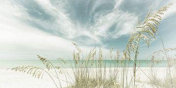 Hemelse stilte op het strand | Vintage Panorama van Melanie Viola