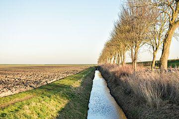 Polder view van Henk de Boer