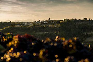 Toscane van Jasper Verolme