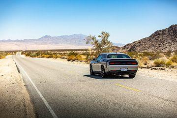Dodge Challenger on U.S Route 62 - Kingman. van Martijn Bravenboer