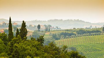 Toscane von Marcel Post