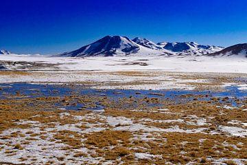 Chili. sneeuw bergen en zout water van Eline Oostingh