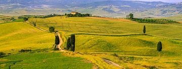 Agriturismo Podere Terrapille, Toskana, Italien von Henk Meijer Photography