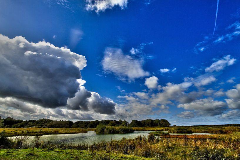 Water landscape van Irene Lommers