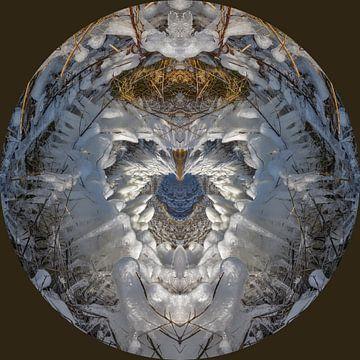 Kunst met ijs. van Greet ten Have-Bloem