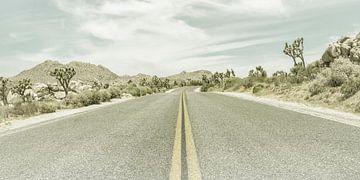 Highway & Joshua Trees | Vintage Panorama von Melanie Viola