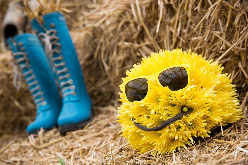 Lief geel bolletje bloemen mannetje met blauwe kaplaarzen op een hooiberg van Dexter Reijsmeijer