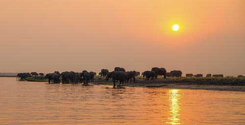 Sunset in Paradise! van Robert Kok