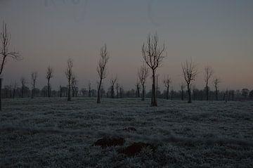 winter op het platteland van Fraukje Vonk