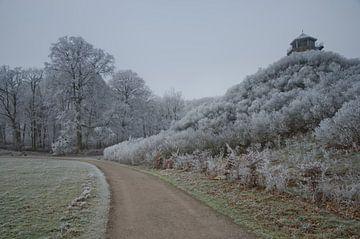 Seringenberg in de winter von Remco Swiers