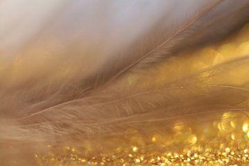 Golden bird van Kvinne Fotografie