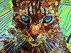 Die rätselhafte Katze von McRoa Miniaturansicht