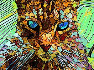 Die rätselhafte Katze