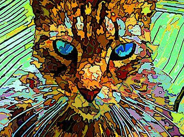De Enigmatische Kat van McRoa