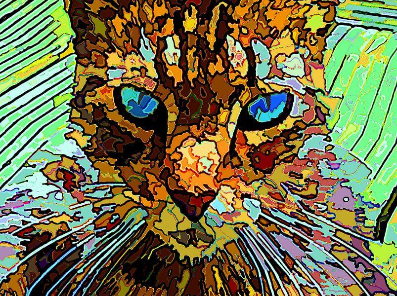 Die rätselhafte Katze von McRoa