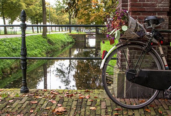Ruiker bloemen op bagagedrager van fiets in Middenbeemster