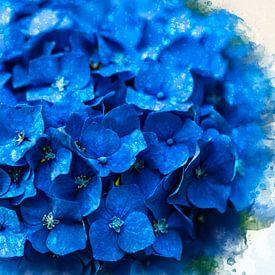 Blauwe hortensia uit eigen tuin (mixed media) van Art by Jeronimo