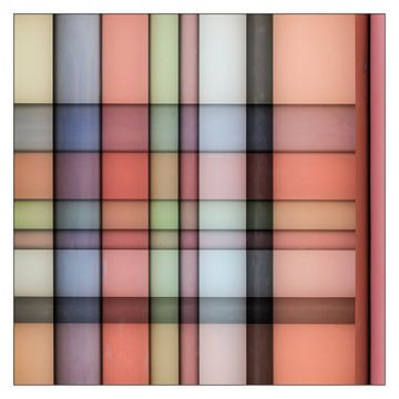 Crossing Colors van Cor Ritmeester