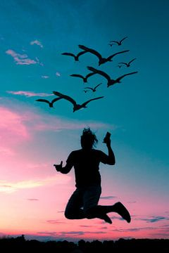 Coucher de soleil coloré avec portrait ombre et oiseaux sur