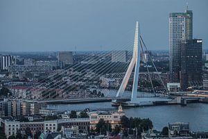 Erasmusbrug Rotterdam in de avond