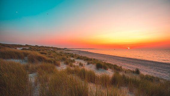 Zeeuwse duinen van Andy Troy