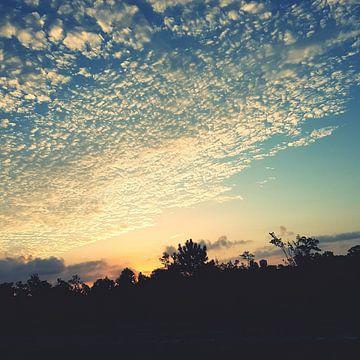 Morgendämmerung von Moriah Dawn