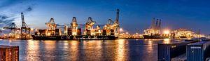Schepen lossen in de haven van Rotterdam - Amazonehaven