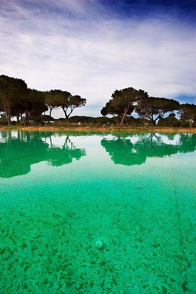 Algarve, Portugal van Paul Teixeira