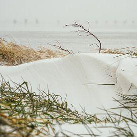 Snowdune sur Martijn Tilroe