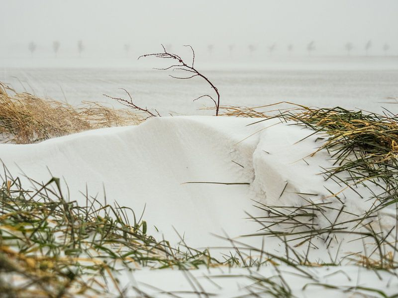 Schneedüne von Martijn Tilroe