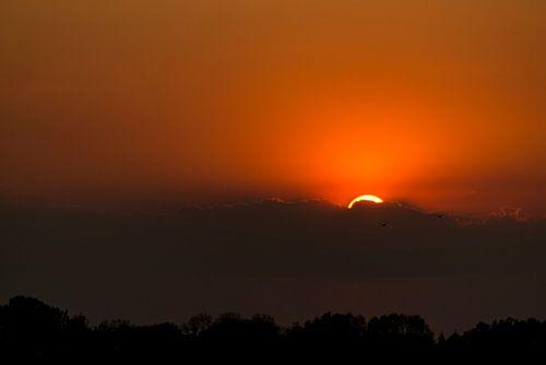 Zonsondergang in de Vreugderijkerwaard van Erik Veldkamp