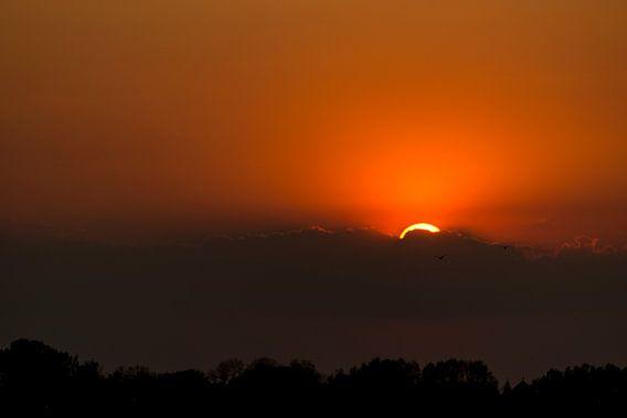 Zonsondergang in de Vreugderijkerwaard