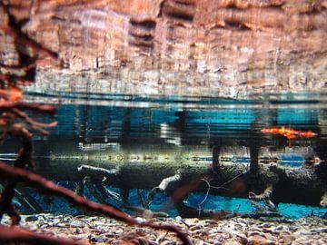 Onderwater von Fenneke Visscher