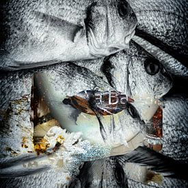 Brown lips and fish van Gabi Hampe