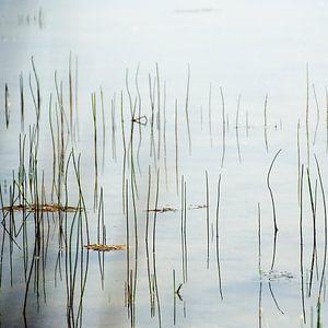 muziekschrift in water van